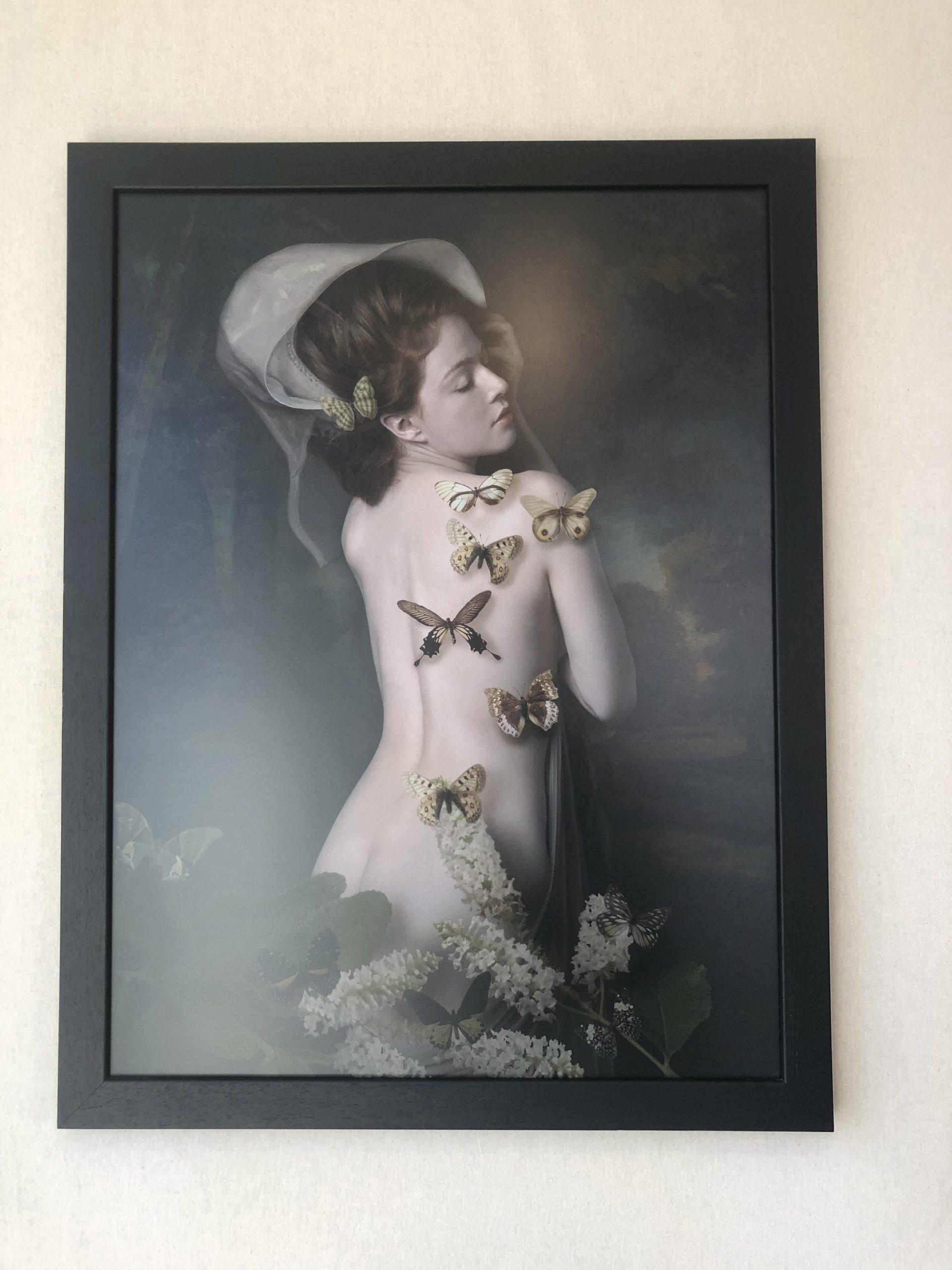 Kunst: Butterfly Bushes van kunstenaar Kaat Stieber