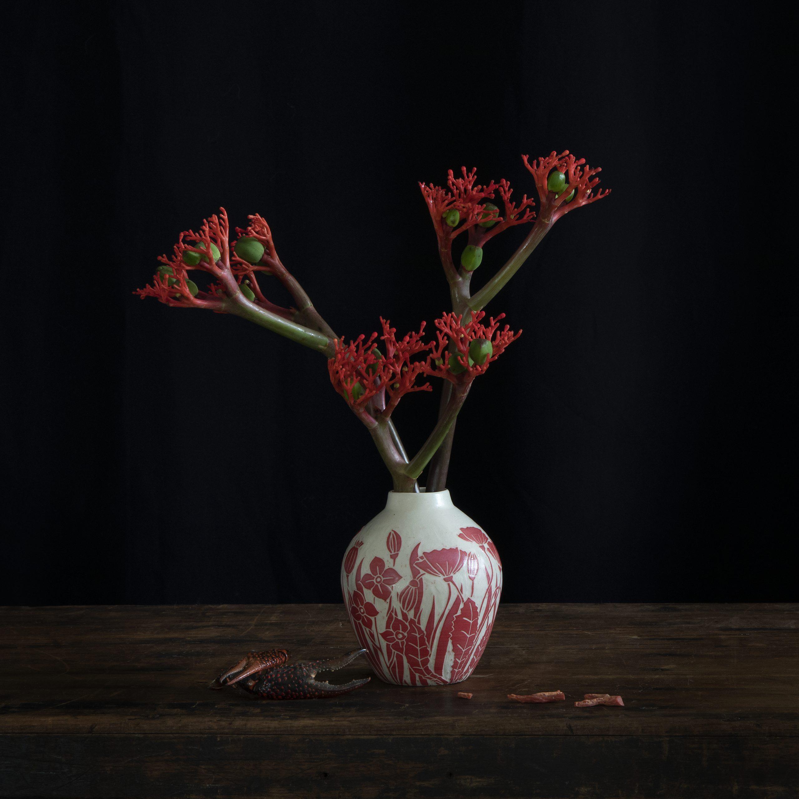 Kunst: Coral Floral van kunstenaar Iris Gonzalez