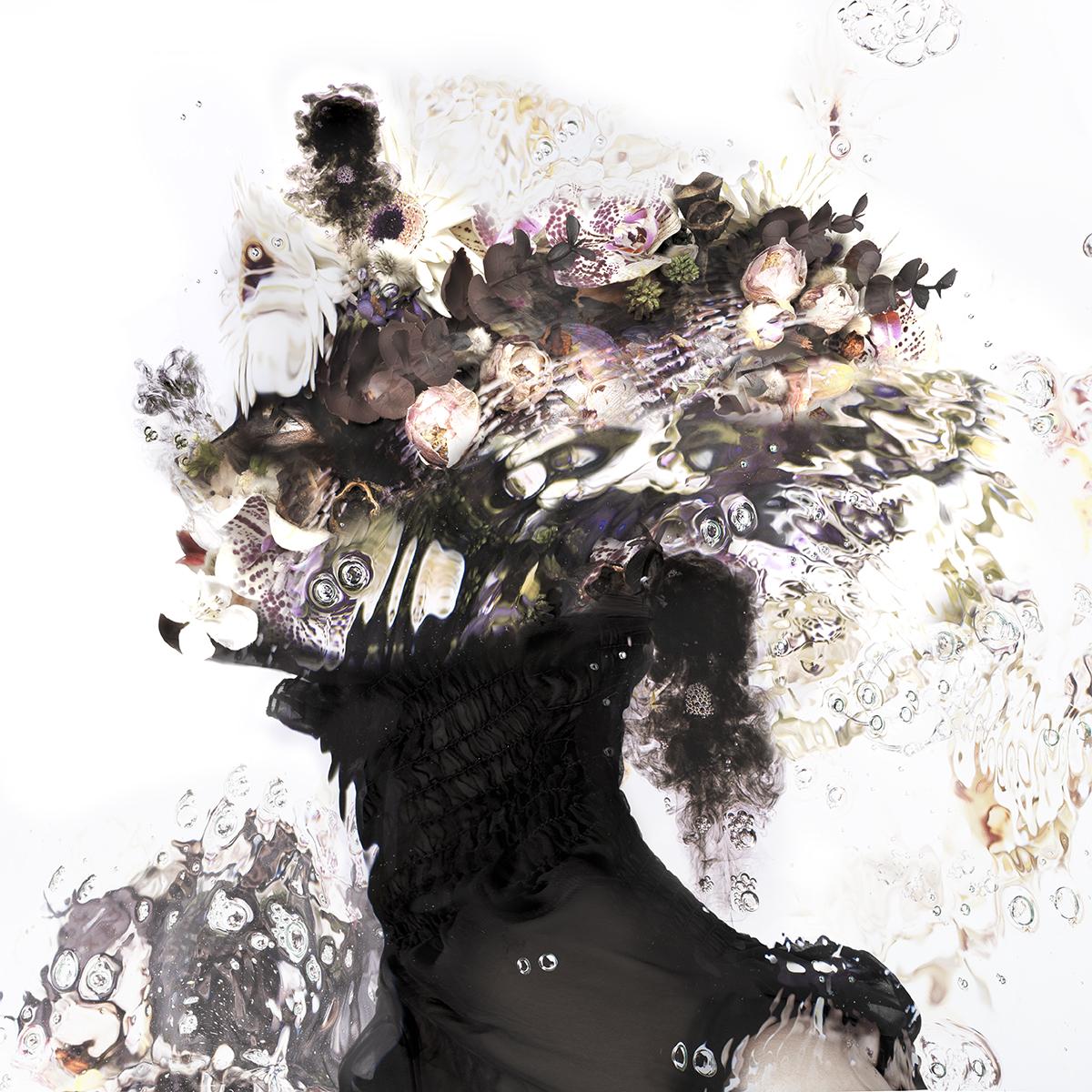 Kunst: Ibis van kunstenaar  dindi