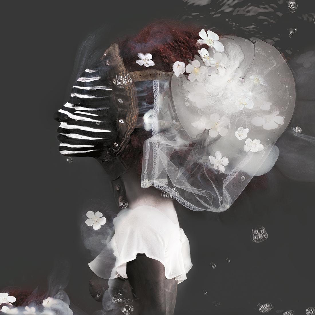 Kunst: Sybille van kunstenaar  dindi