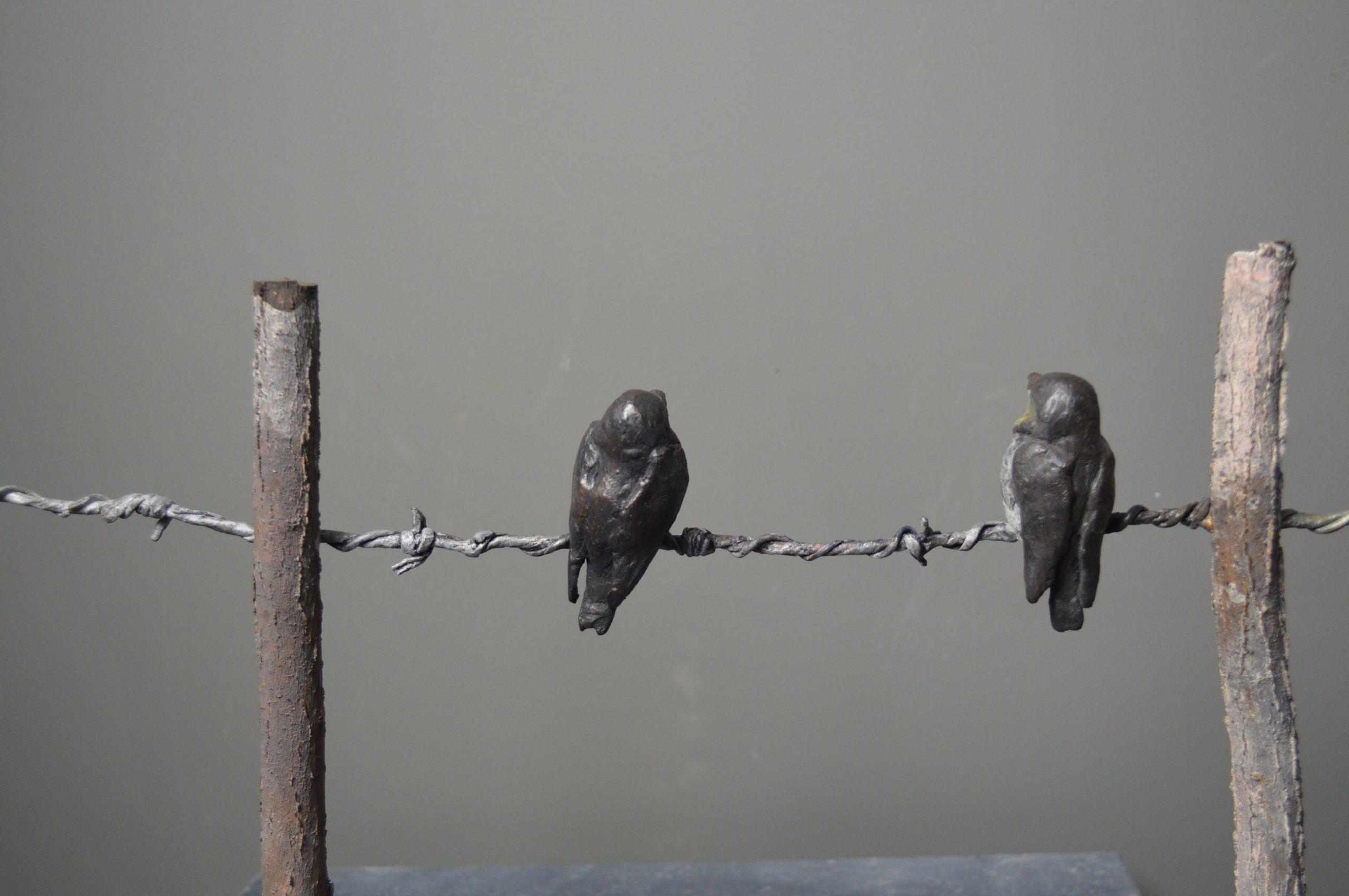 Kunst: jonge zwaluwen op prikkel draad van kunstenaar Chris Gadiot