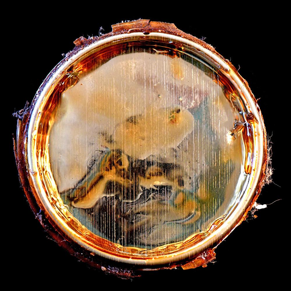 Kunst: REFLECTION van kunstenaar Anouk van Tetering (Anoukart)