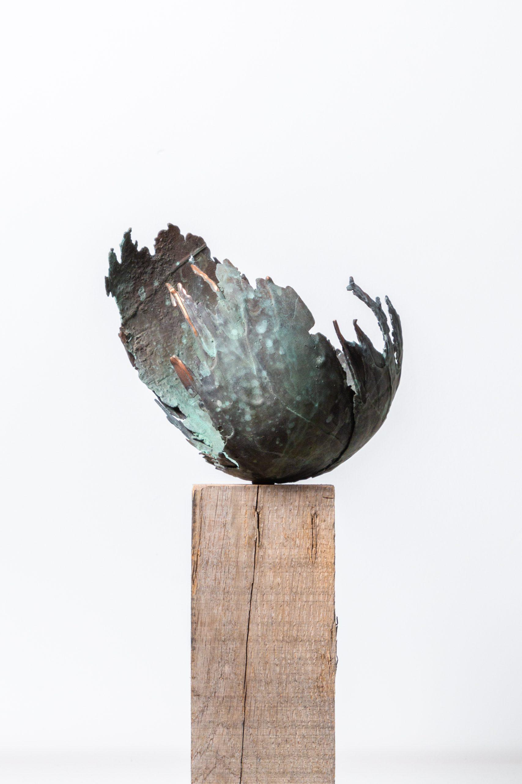 Kunst: Zij groeit van kunstenaar Monique Lipsch