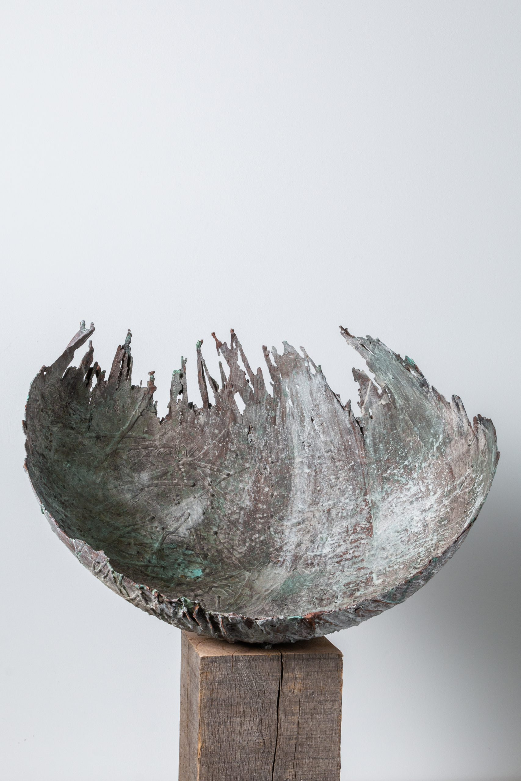 Kunst: Zij ontplooit van kunstenaar Monique Lipsch