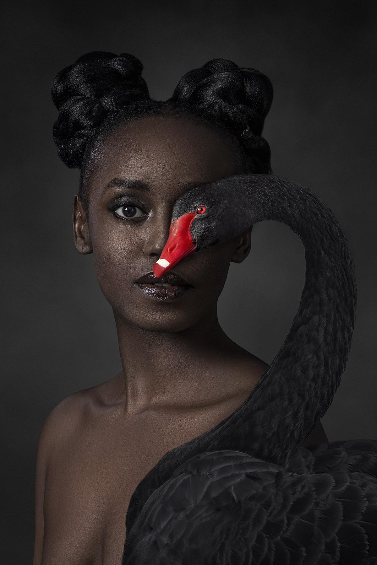 Kunst: Black Beauty van kunstenaar Gert Kist