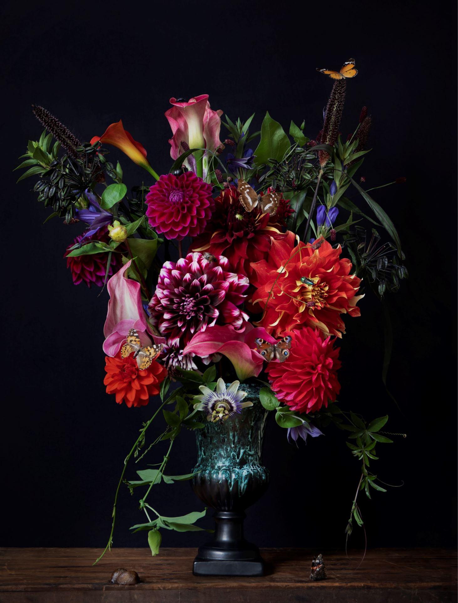 """Kunst: Flowers #19 """"Darling Dahlia"""" van kunstenaar Iris Gonzalez"""