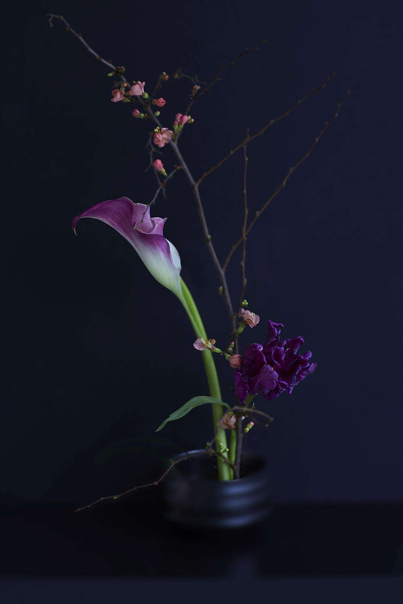 Kunst: Kurai Hana van kunstenaar Gert Kist