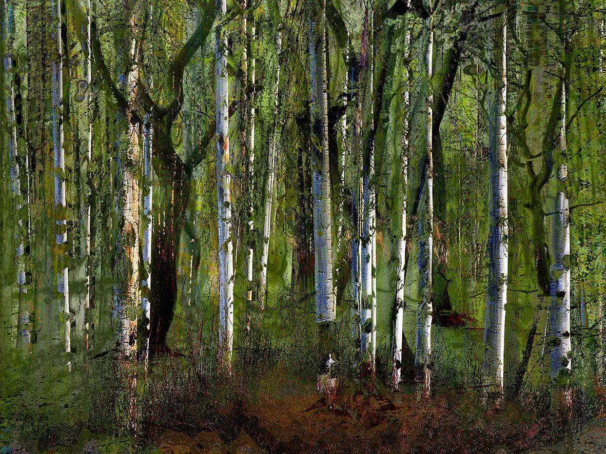Kunst: mystifying forrest II van kunstenaar Geert Lemmers