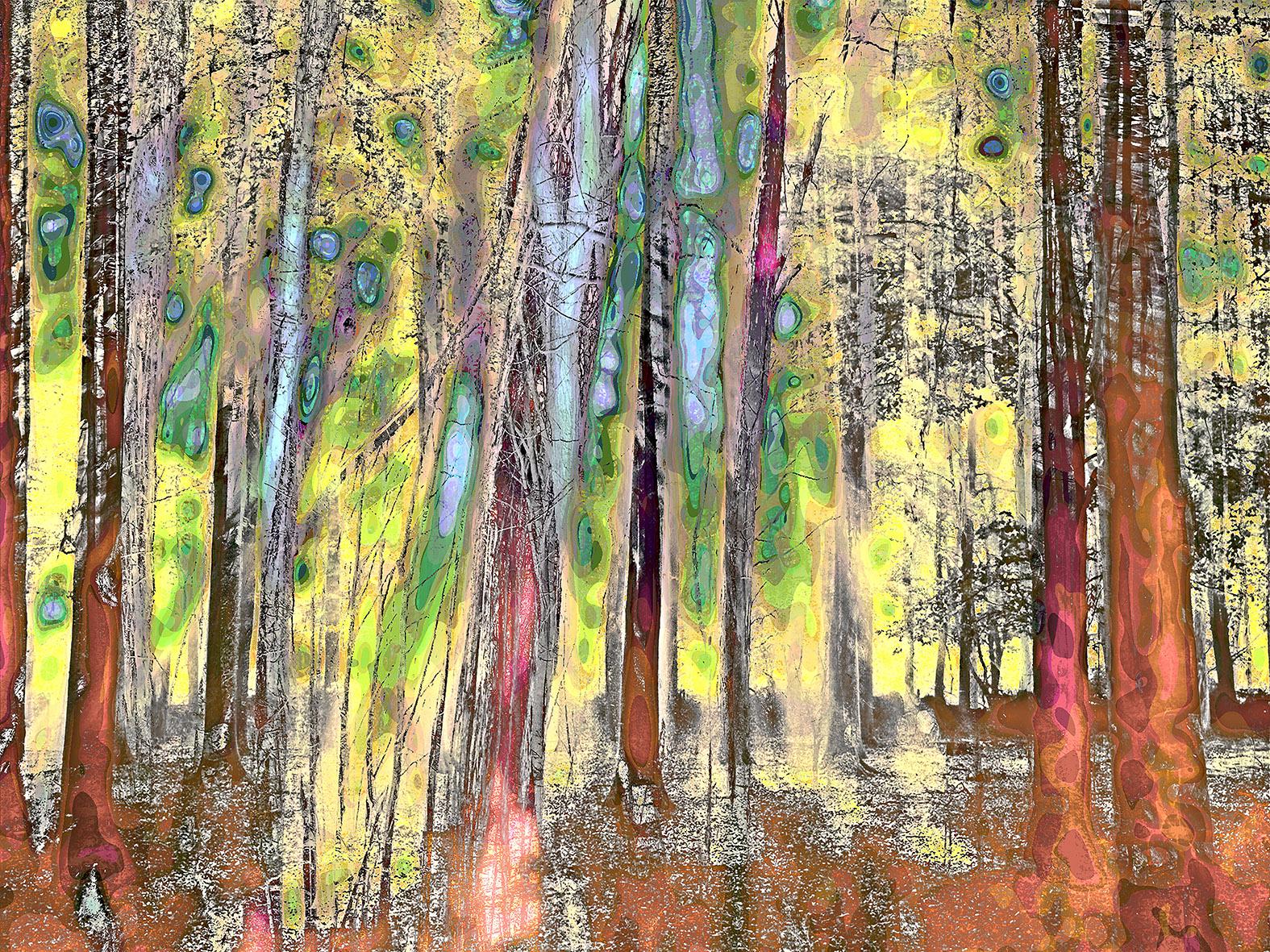 Kunst: mystifying forrest V van kunstenaar Geert Lemmers