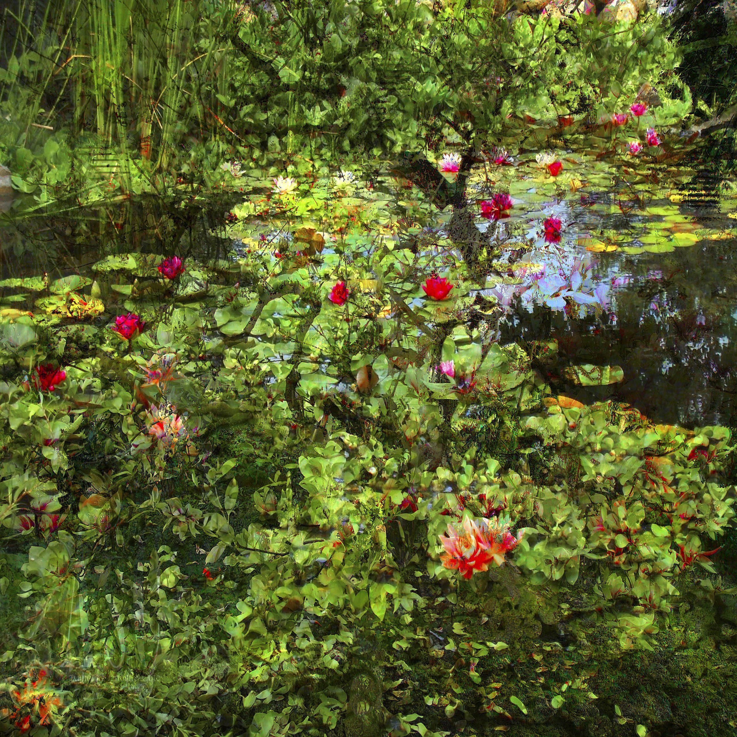 Kunst: Geheim bosgebied van kunstenaar Geert Lemmers