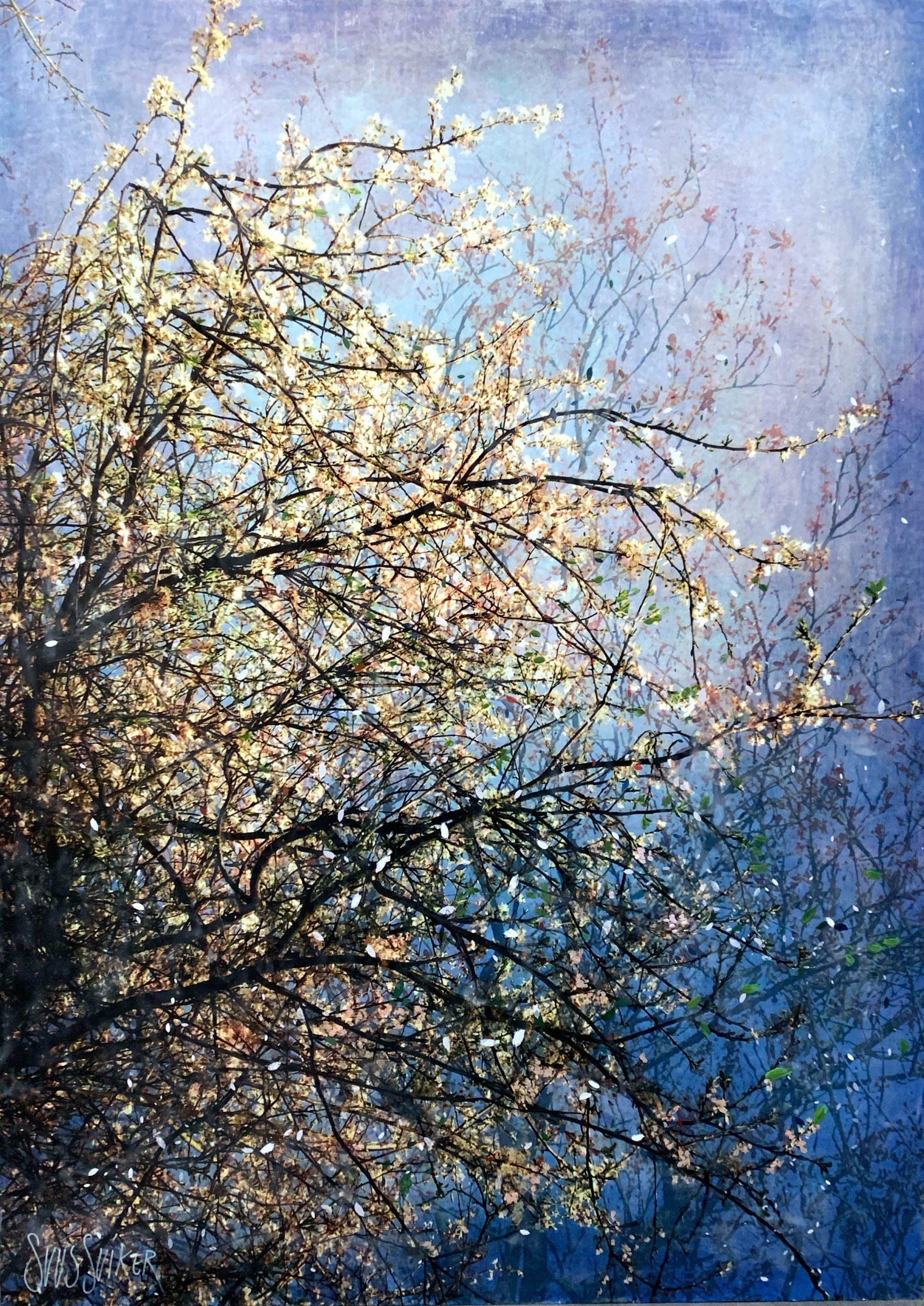 Kunst: Symbiose 140-15 van kunstenaar Suus Suiker