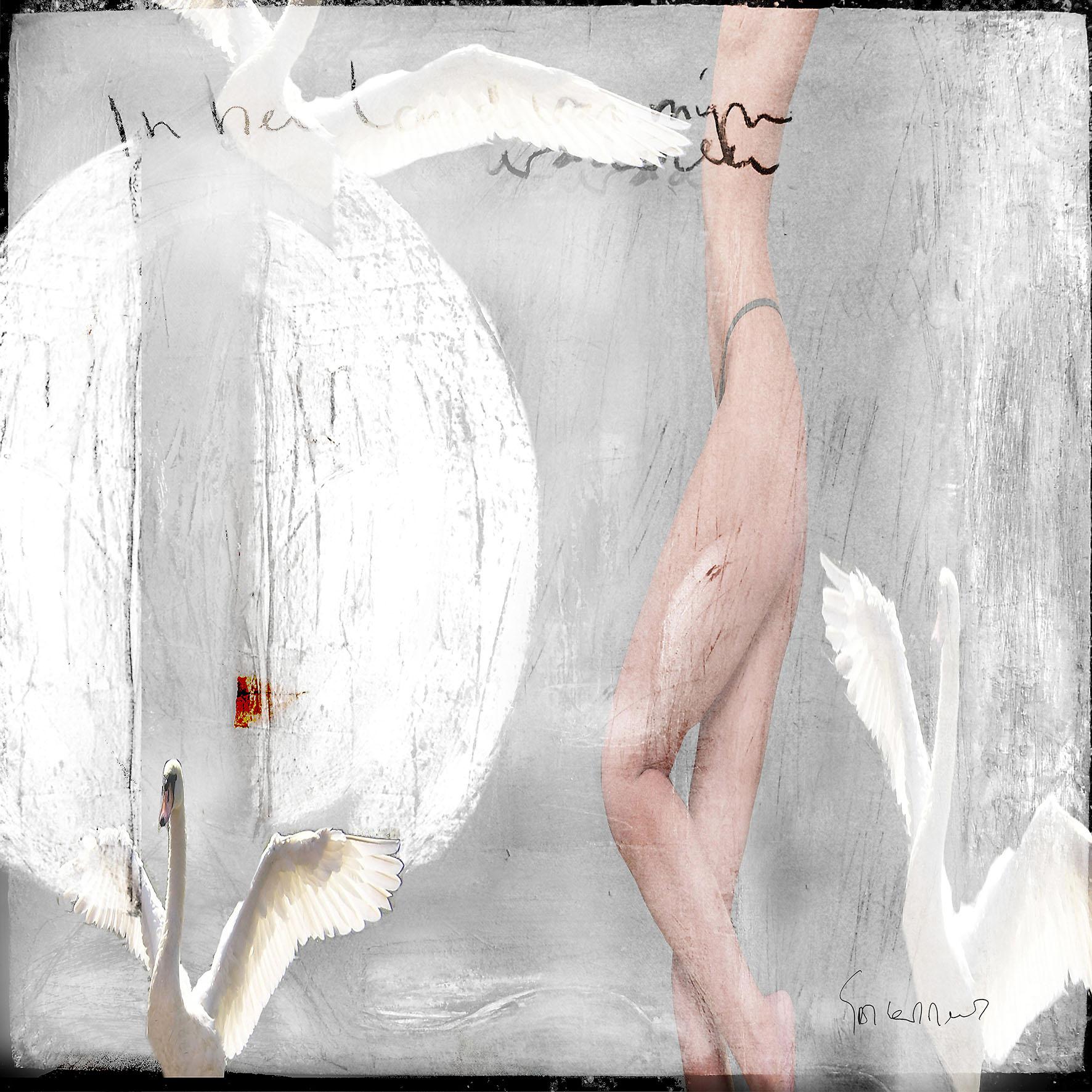 Kunst: In het land van mijn vaderen Opus 33 van kunstenaar Geert Lemmers