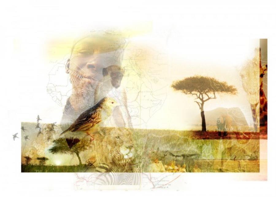 Kunst: Africa van kunstenaar Kim Heesakkers
