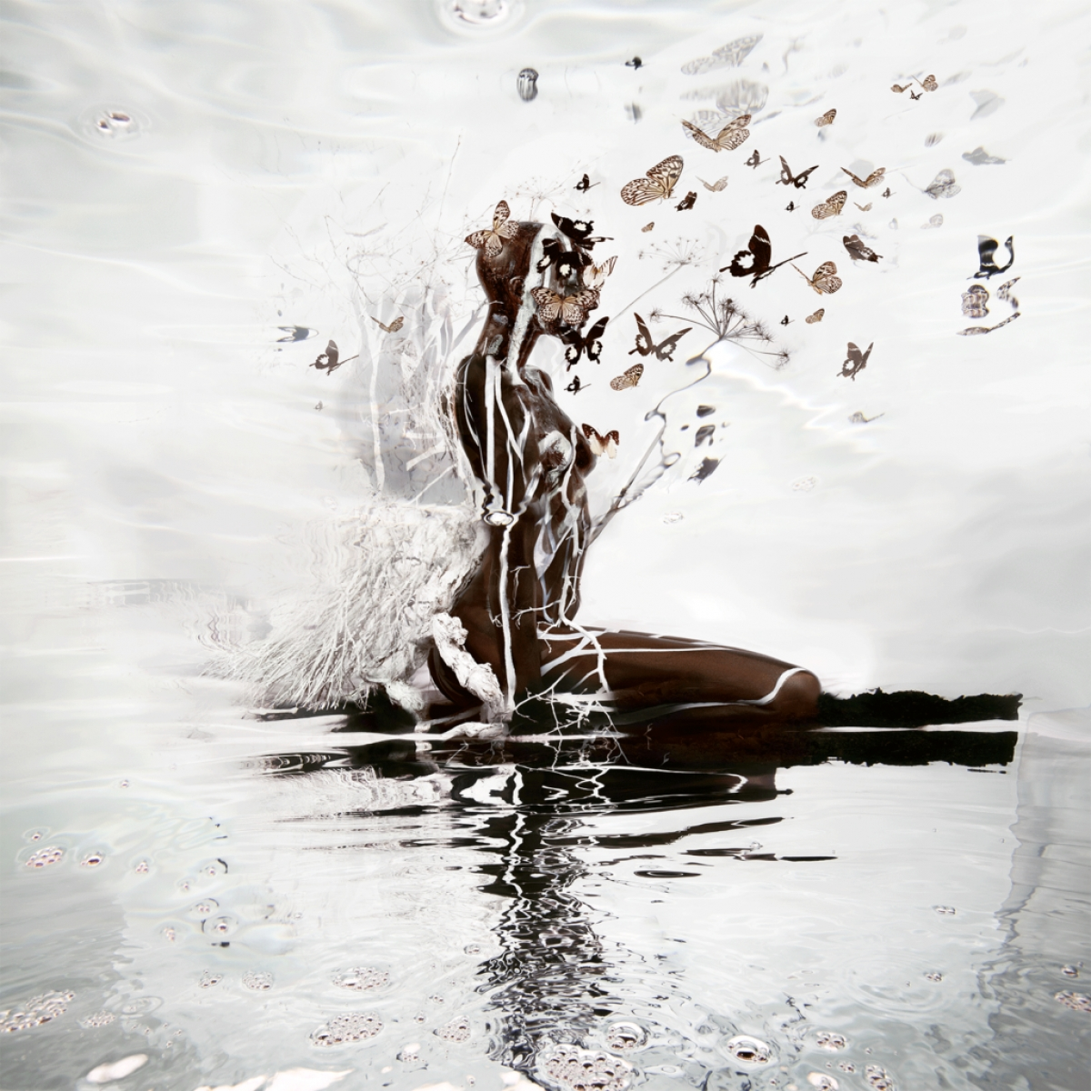 Kunst: Brown Sugar van kunstenaar  dindi