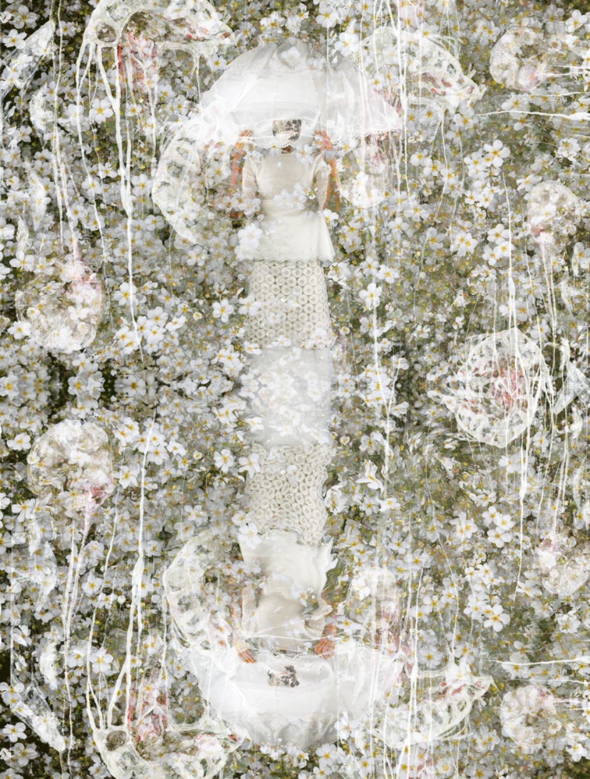 Kunst: Carnaval les Fleurs van kunstenaar  dindi