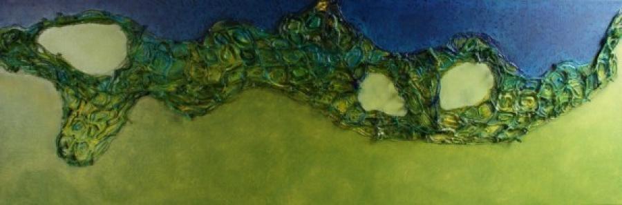 Kunst: Cellulaire stelsels van kunstenaar Els Vegter