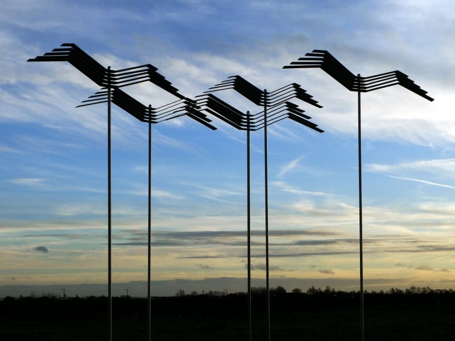 Kunst: Crows van kunstenaar Bert Verboon