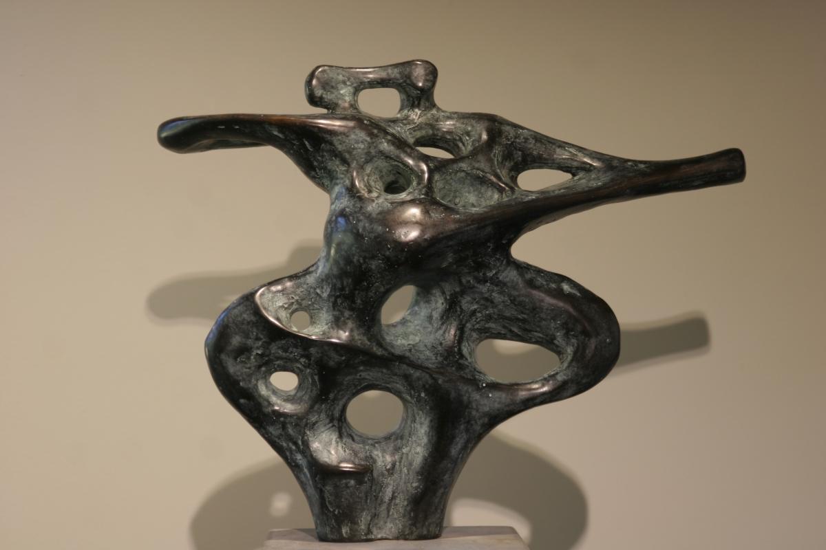 Kunst: Dans van kunstenaar  Rogier Ruys