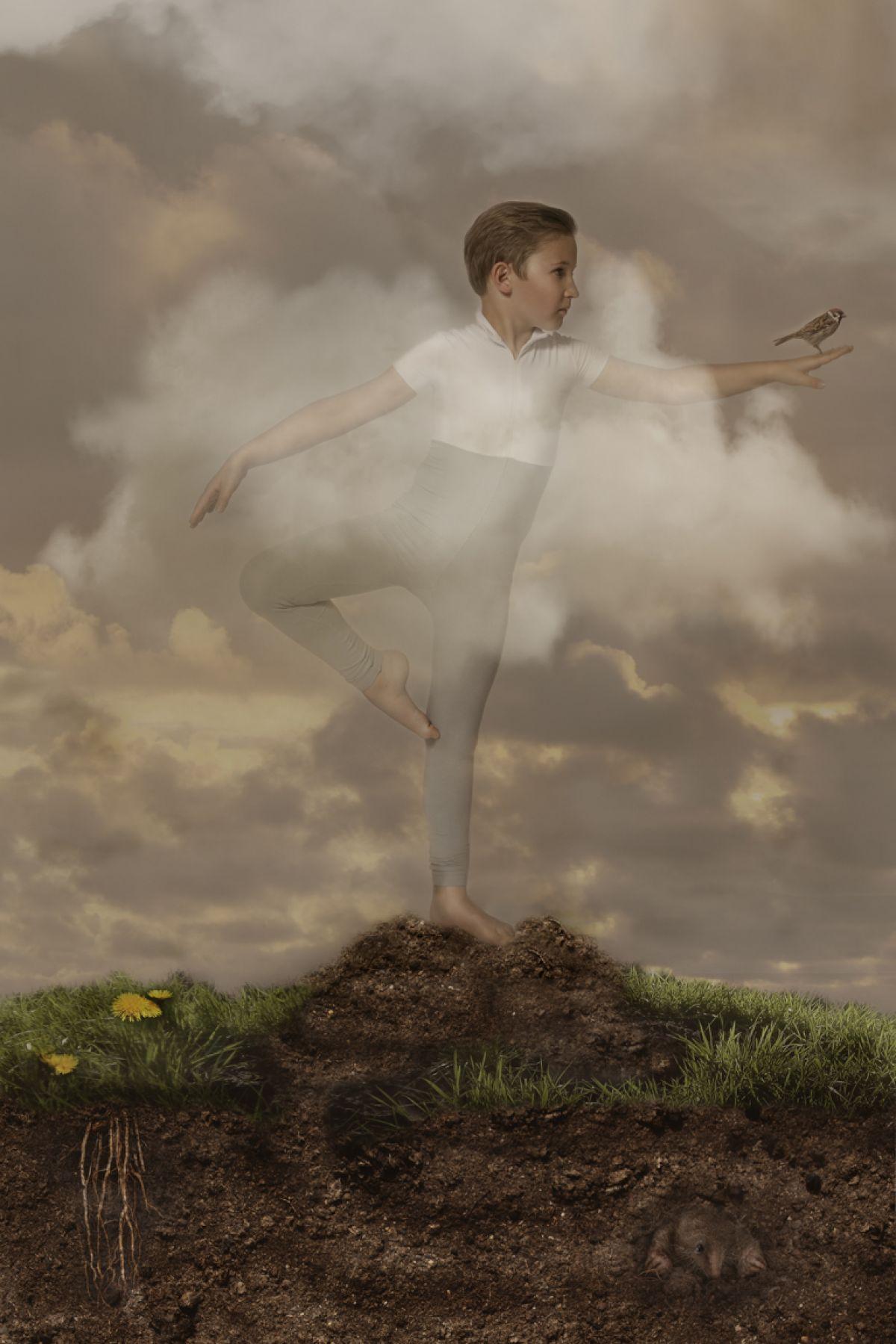 Kunst: Dutch Mountains 1/2 van kunstenaar Kaat Stieber