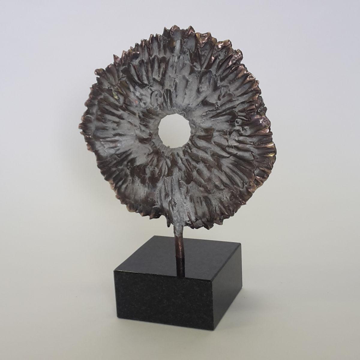 Kunst: Fossiel van kunstenaar Tina Lintvelt