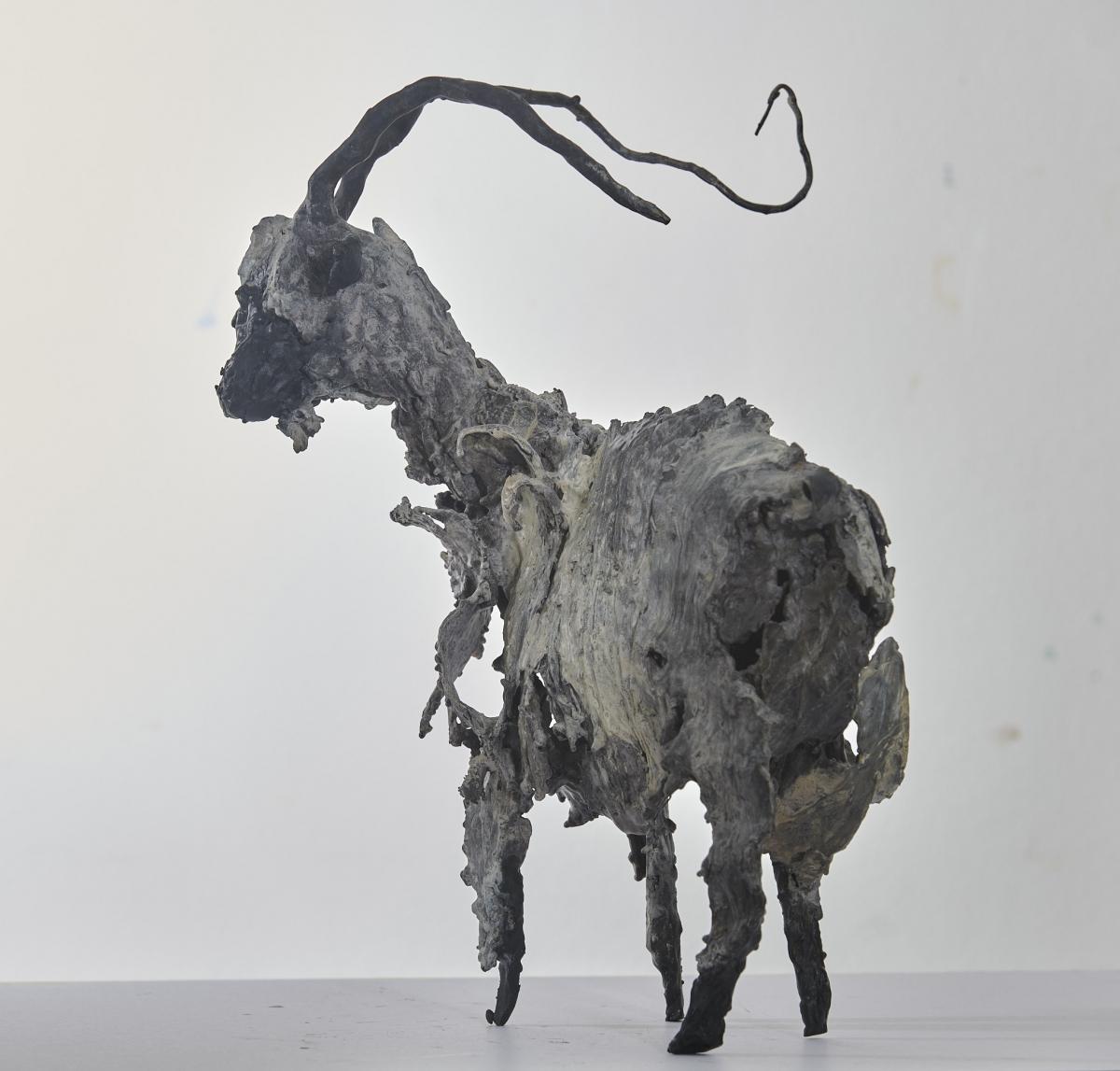 Kunst: Geit 15 van kunstenaar Edith Stoel