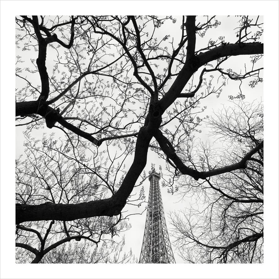 Kunst: La Tour Eiffel – Study 1 van kunstenaar Wilco Dragt