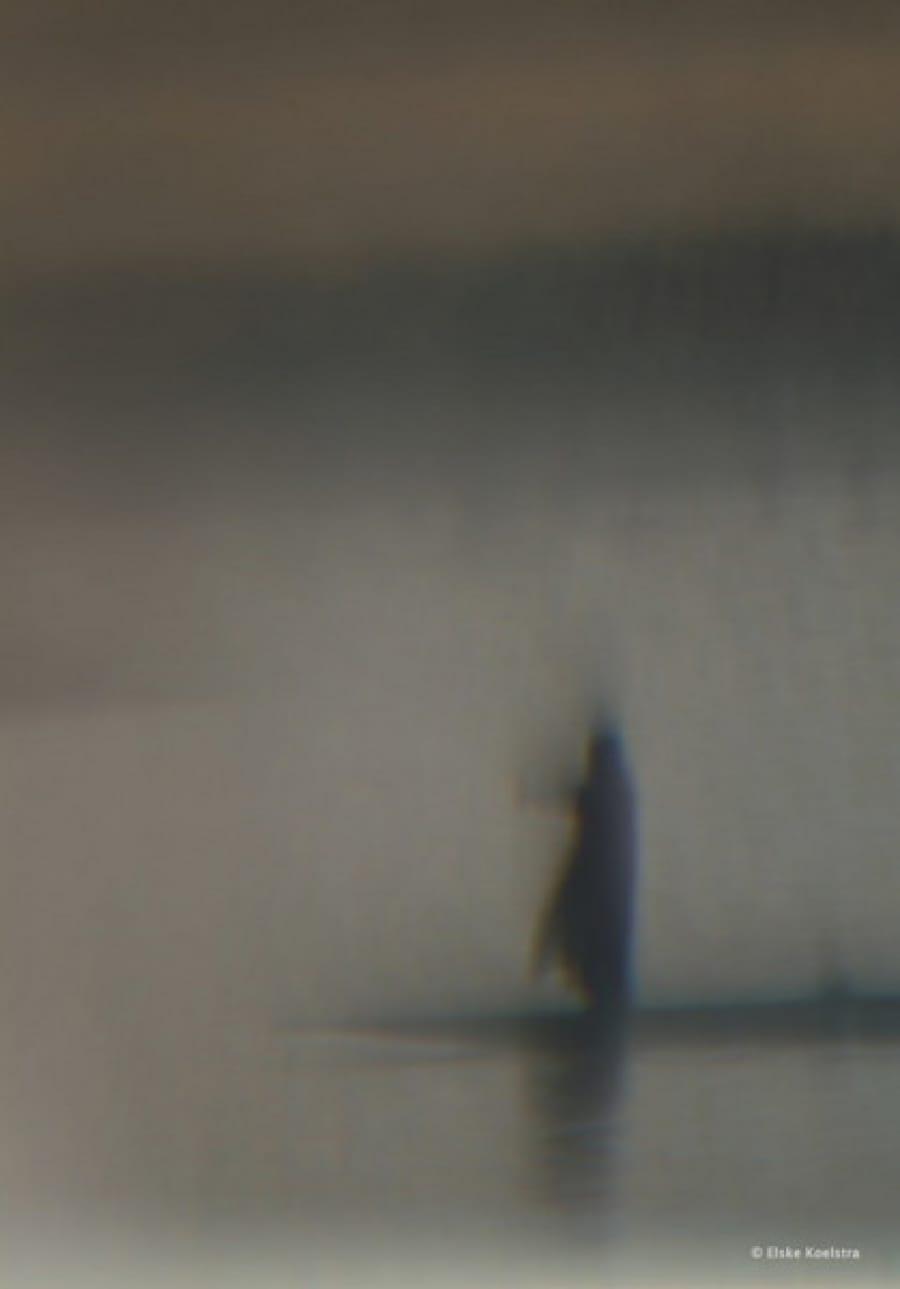 Kunst: Les deux hommes et le bateau (1) van kunstenaar Elske Koelstra