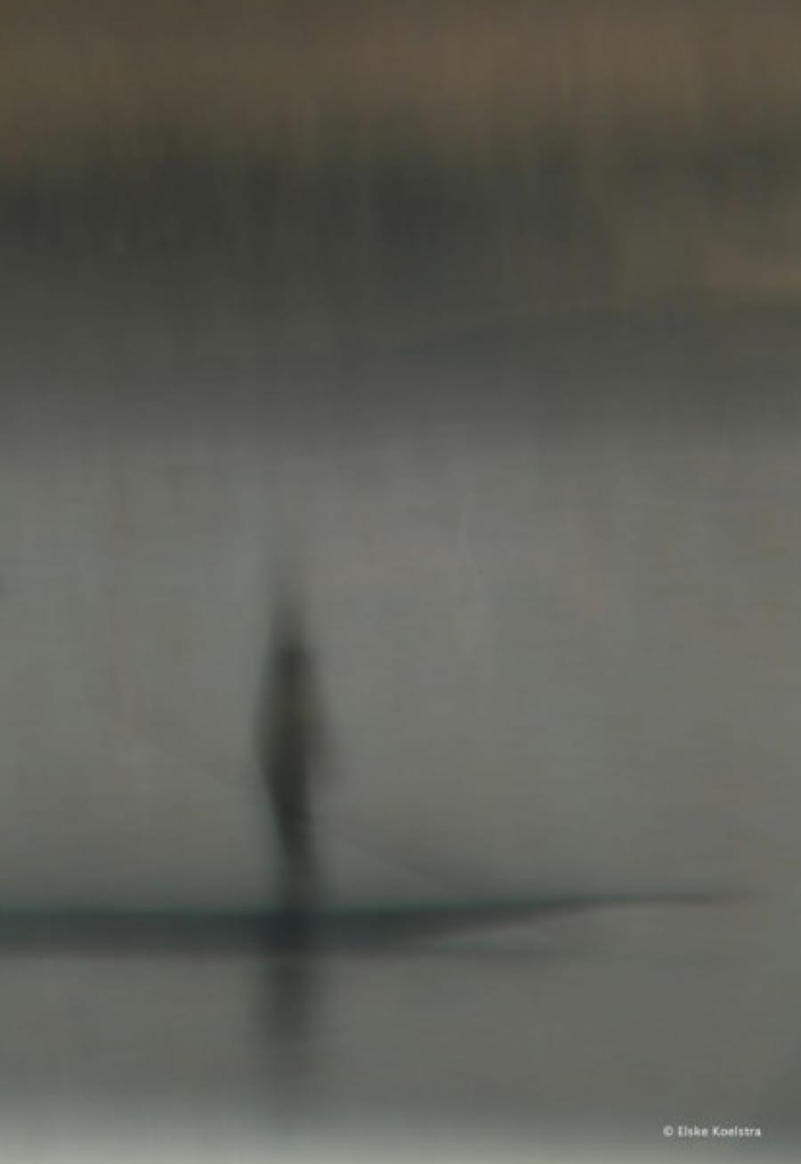 Kunst: Les deux hommes et le bateau (2) van kunstenaar Elske Koelstra