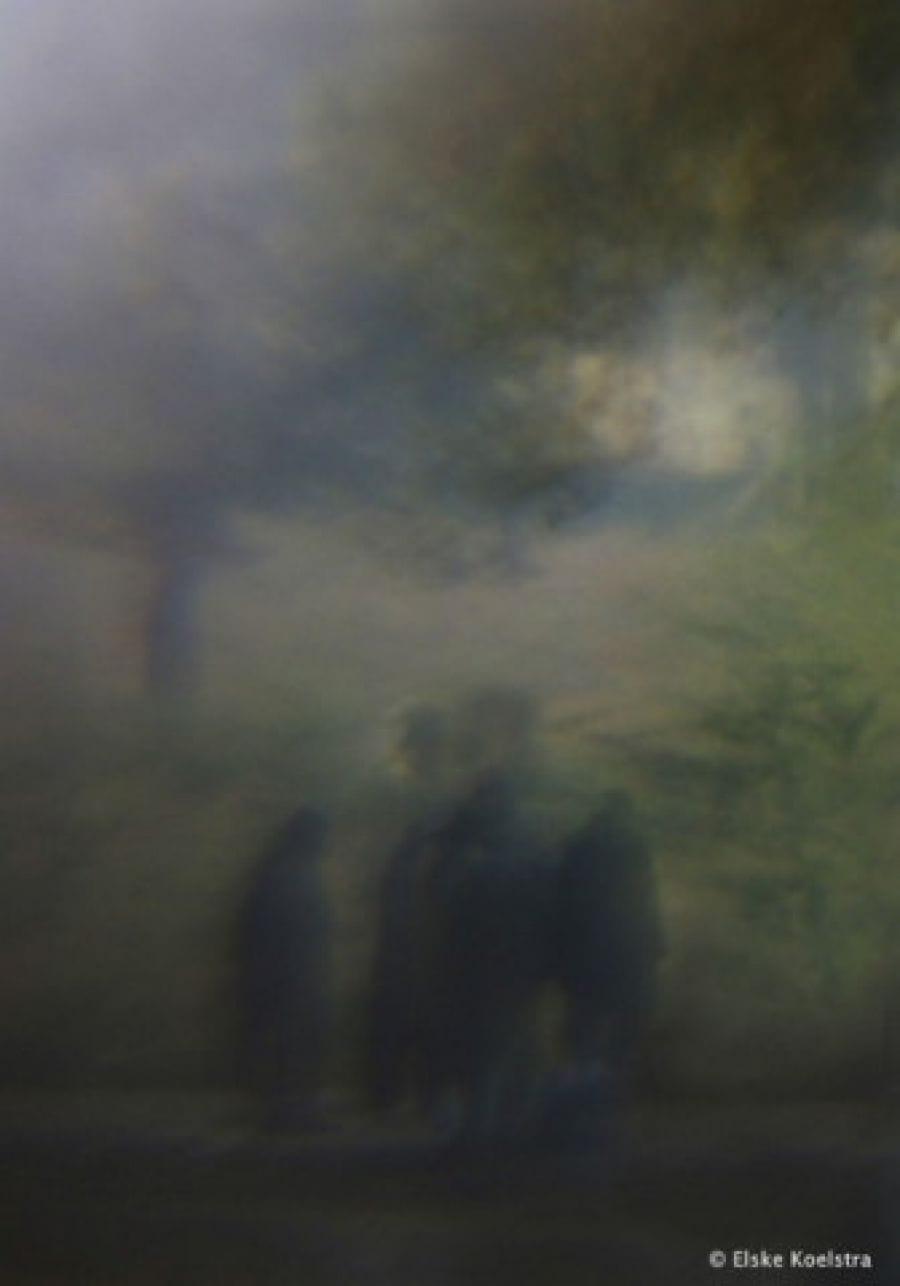 Kunst: Les ombres sous l'arbre (2) van kunstenaar Elske Koelstra
