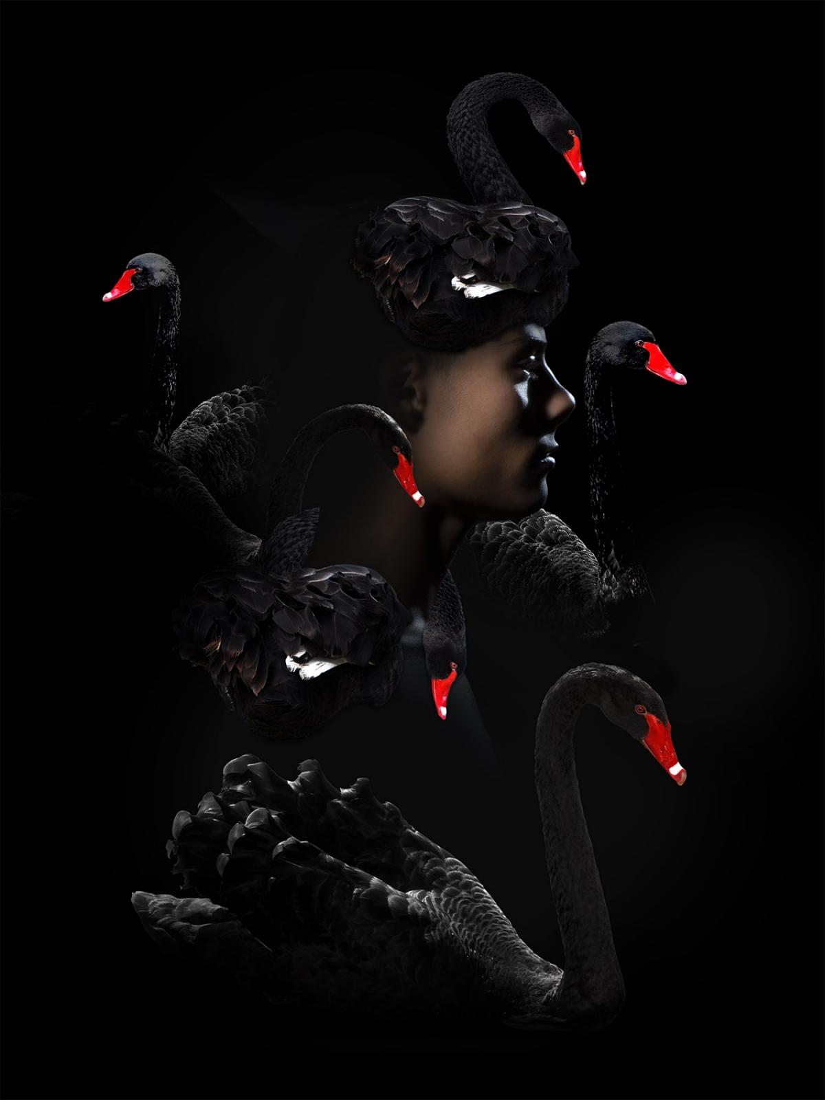 Kunst: Medusa swan van kunstenaar Gert Kist