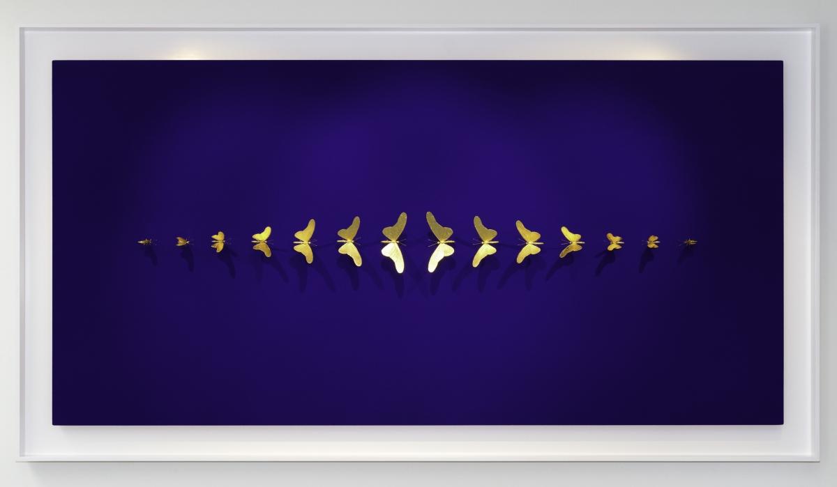 Kunst: Metamorphosis Blue van kunstenaar Samuel Dejong