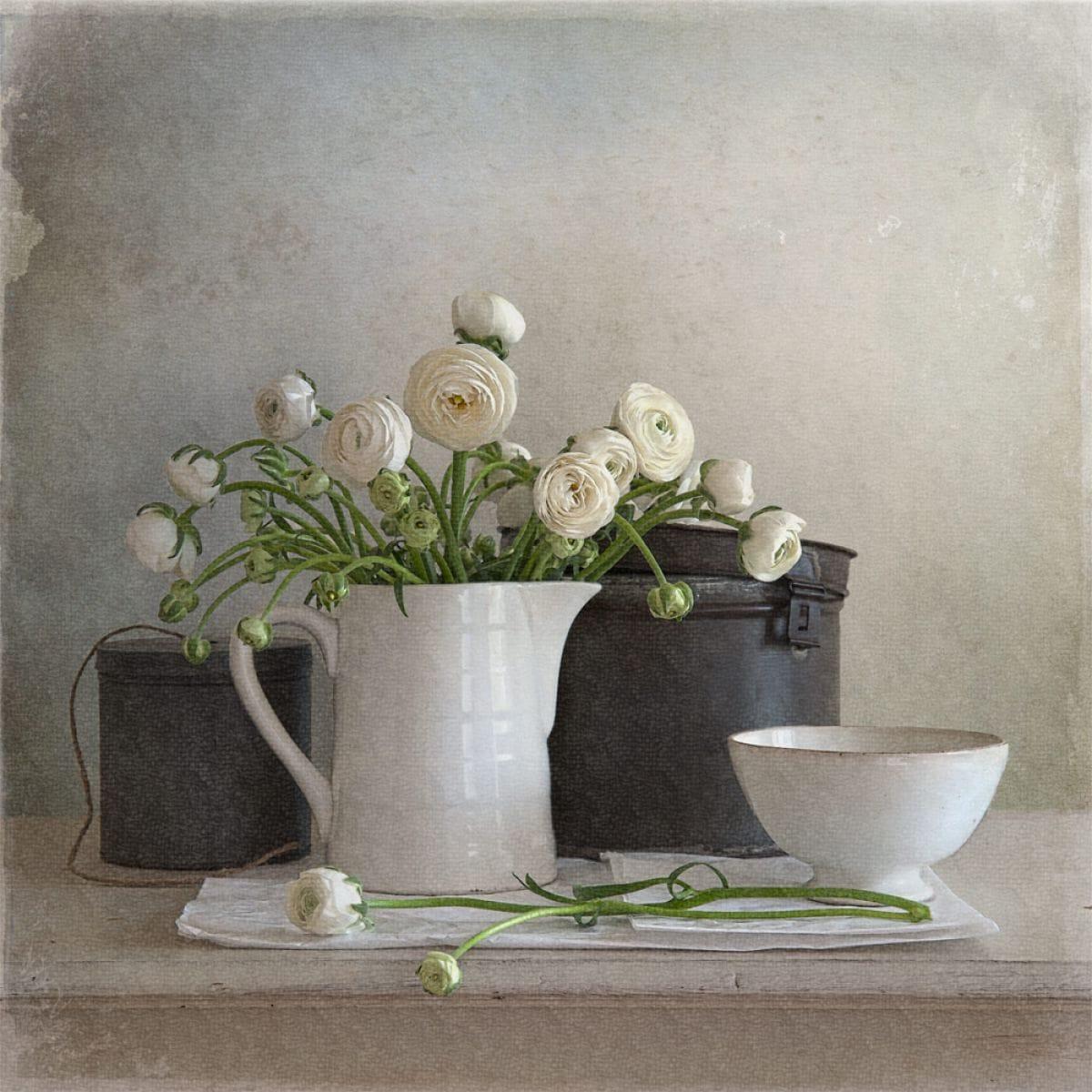 Kunst: Ranunculus van kunstenaar Tineke Stoffels