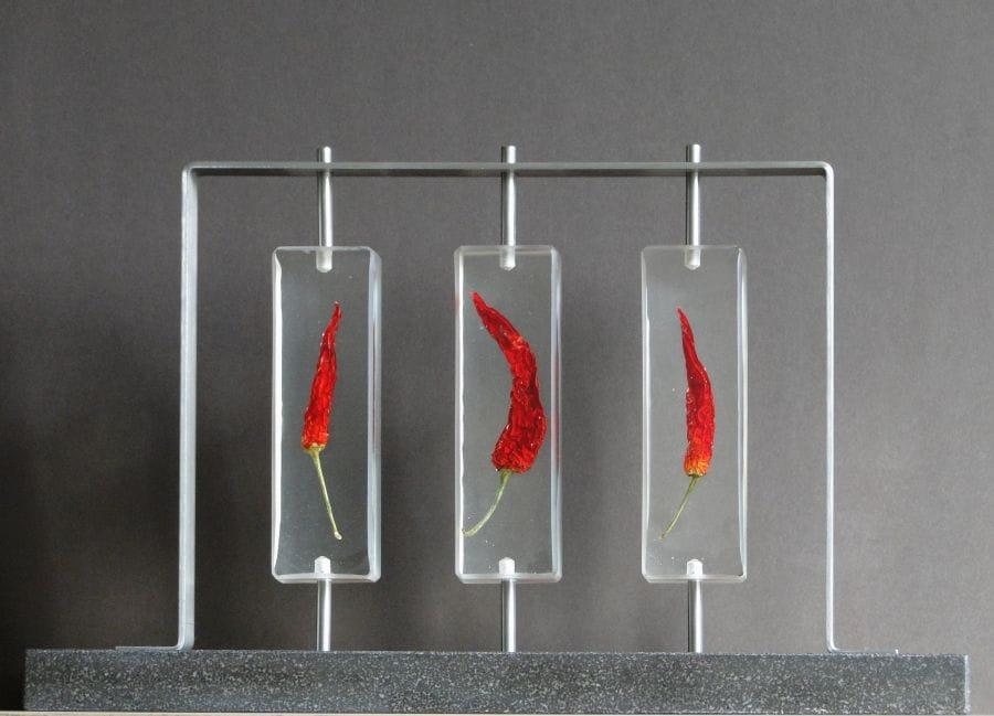 Kunst: Red Pepper Flame van kunstenaar Bert Verboon