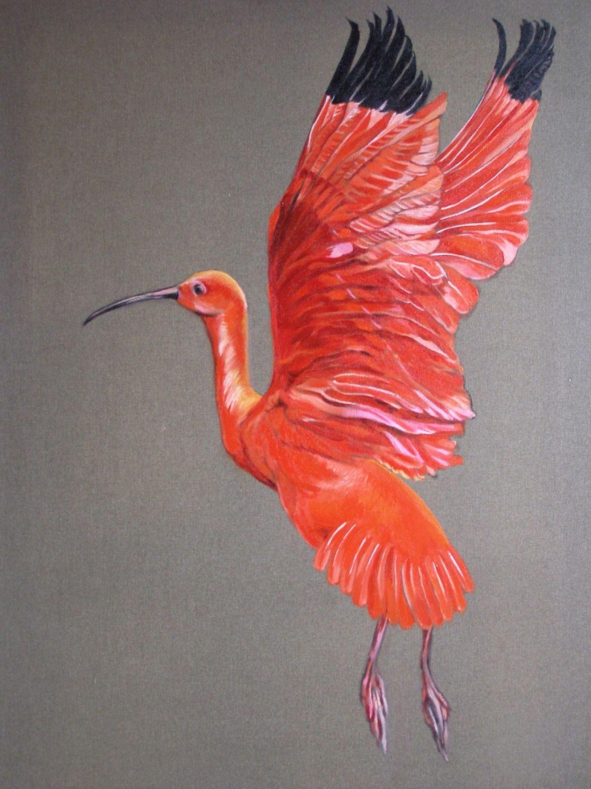 Kunst: Rode Ibis van kunstenaar Sanneke S.I. Griepink