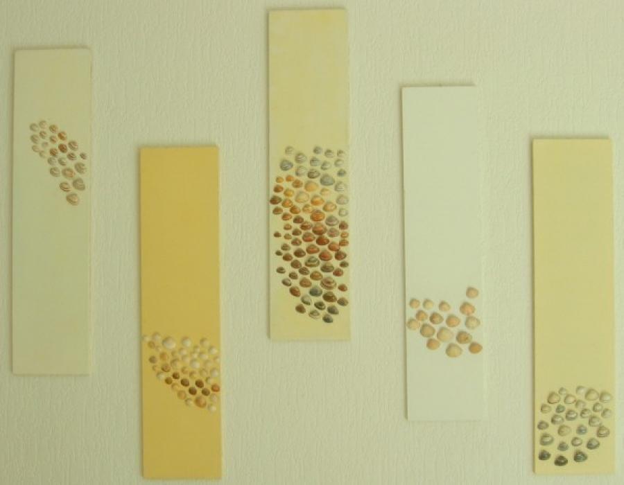Kunst: schelpen vijfluik van kunstenaar Koeno Jansen