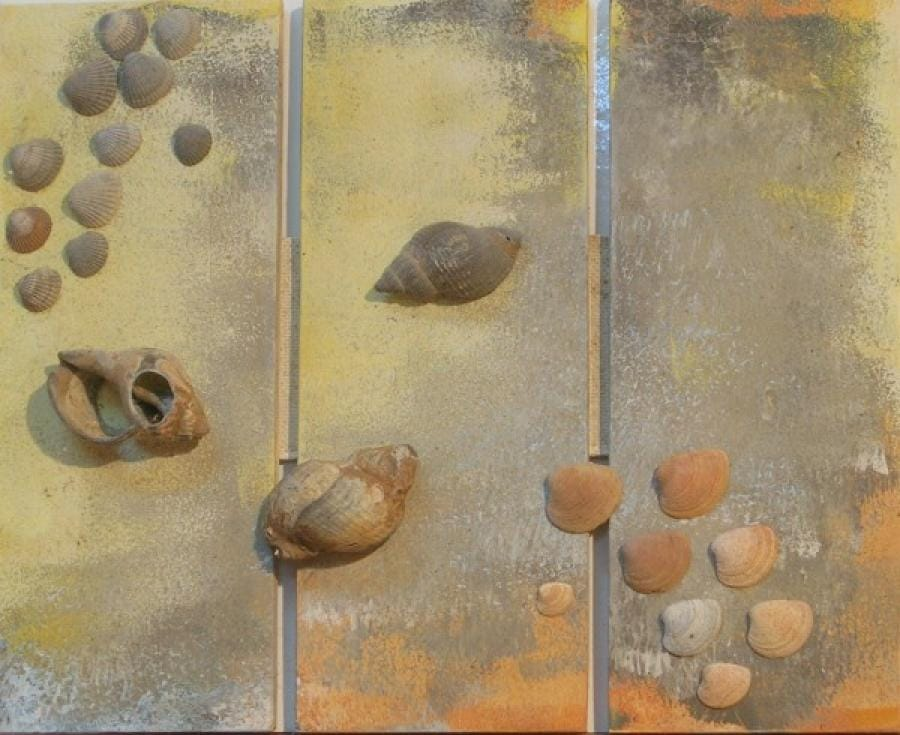 Kunst: schelpendrieluik 6 van kunstenaar Koeno Jansen
