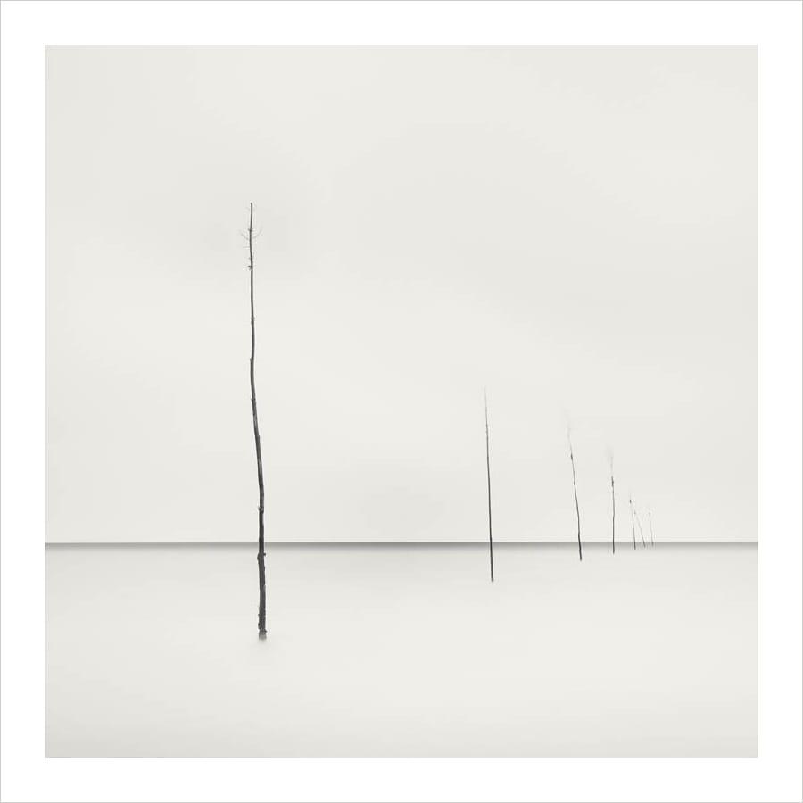 Kunst: Seven fishing posts van kunstenaar Wilco Dragt