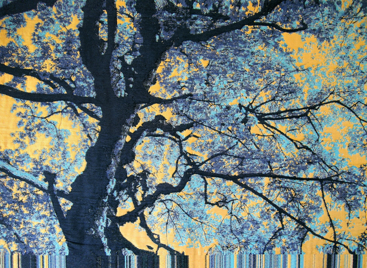 Kunst: Sylvain van kunstenaar Irene van Vliet