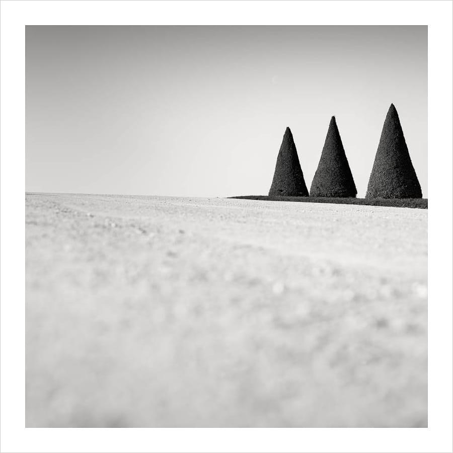 Kunst: Three conical trees van kunstenaar Wilco Dragt