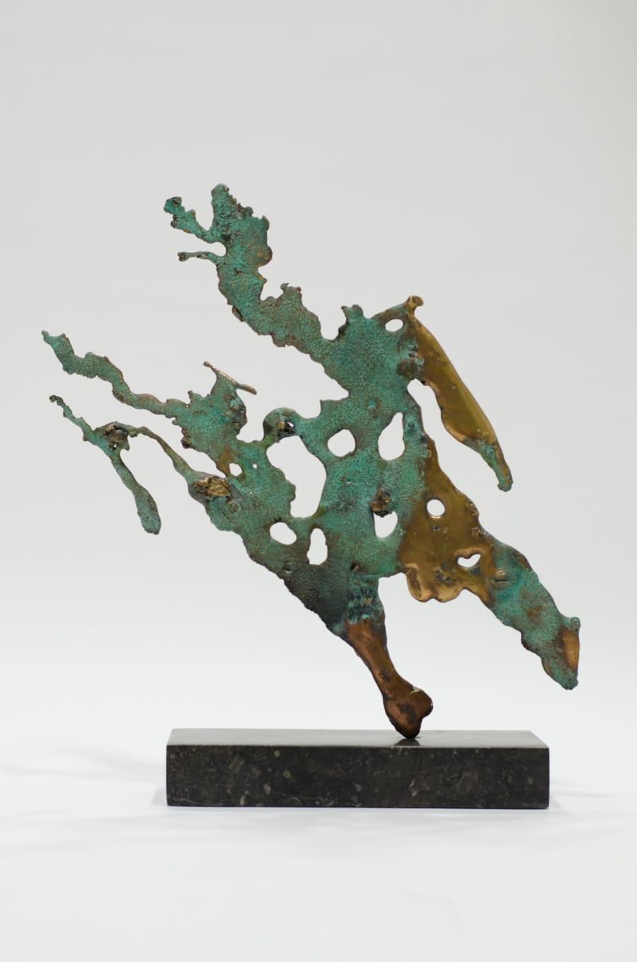 Kunst: Wondere Wereld van kunstenaar Els Grootaers