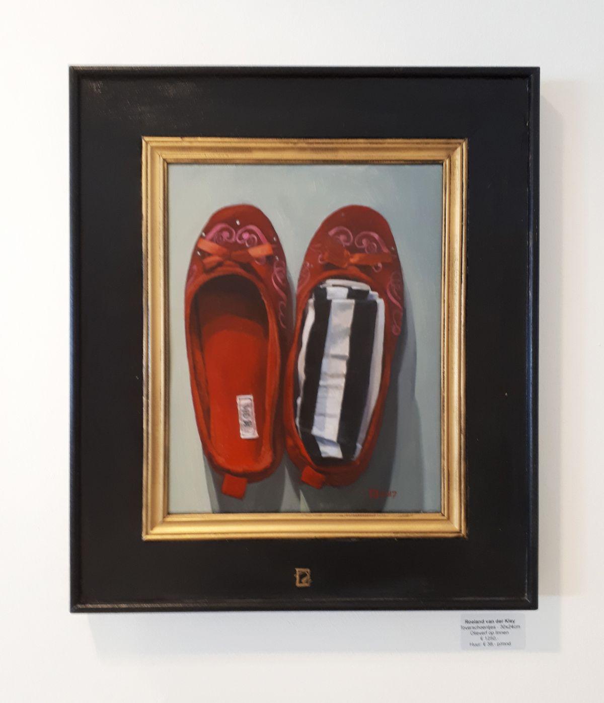 Kunst: Toverschoentjes van kunstenaar Roeland van der Kley